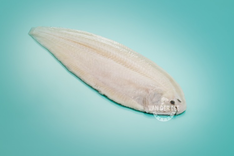 Pan ready Dover sole