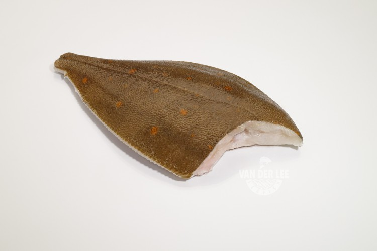 Plaice (Pan Ready)