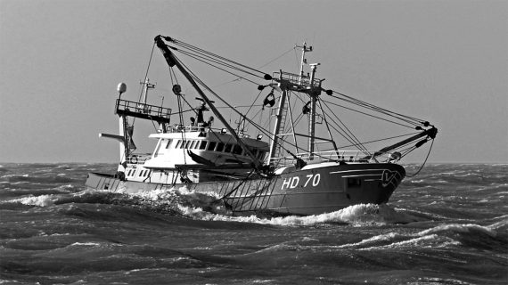Van der Lee Seafish buys own fishing boat